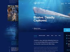 Museum Of Science And Industry Of Chicago - Exhibit page by Dogstudio #Design Popular #Dribbble #shots