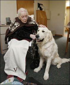 therapy dog. #hawaiirehab www.hawaiiislandrecovery.com