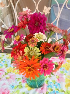Zinnias...the eye candy of the flower world