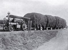 Church's traction engine hauling 15 tons of clover from Greenstreet to A. Small's dairy farm at Wakanui, Ashburton , Christchurch City Libraries Heritage Photograph Collection Antique Tractors, Vintage Tractors, Old Tractors, Vintage Farm, White Tractor, New Tractor, Steam Tractor, Strange Cars, Old Farm Equipment