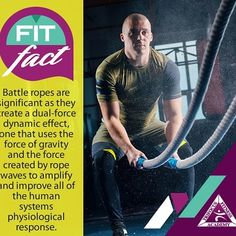Battle Ropes, Gym Junkie, Stay Active, Need To Know, Effort, Fitness Motivation, Campaign, Knowledge, Lovers