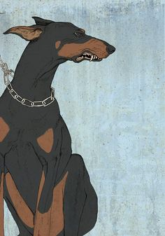 Doberman by Sivan Hurvitz, via Behance Animal Drawings, Art Drawings, Illustrations, Illustration Art, Arte Indie, Doberman Dogs, Dog Art, Art Inspo, Art Reference