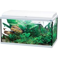 Aquarium AQUADREAM LED 80 Zolux - POISSON - Animalerie - Jardiland