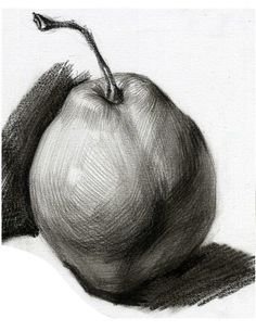 Learning to Draw? You're Gonna Need a Pencil - Drawing On Demand Pencil Drawing Tutorials, Pencil Art Drawings, Realistic Drawings, Drawing Sketches, Fruits Drawing, Observational Drawing, Object Drawing, Still Life Drawing, Basic Drawing