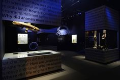 """10 Questions With... Mok Wei Wei 