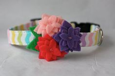 spring time dog collar with felt flowers for my girl