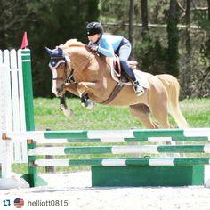 #Repost Addison & Jaxon at #CVSJA with her #fillyfinery bonnet! #hunterjumper #prettyproductsforprettyponies #flybonnet #equestrianstyle #styleyoursteed #jumper #horsesofinstagram