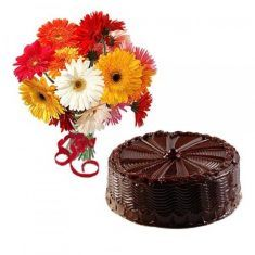 This combo consists of a bunch of 10 mixed Gerbera(yellow, pink, white,red) and 1 kg Chocolates cakes. Buy Gifts Online, Tasty Chocolate Cake, Cake Delivery, Unusual Gifts, Gerbera, Special Occasion, Pink White, Yellow, Chocolates