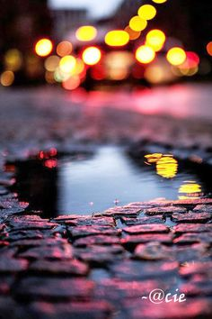 Imagem de light, photography, and rain Bokeh Photography, Reflection Photography, Urban Photography, Night Photography, Creative Photography, Amazing Photography, Landscape Photography, Abstract Photography, Color Photography