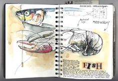 JOURNAL Fish Pages 21st sept 2009 www.duncancameron.org