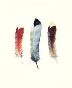 Feathers Art Print by Amy Hamilton | Society6
