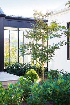 Catalina | Jess Hunter Interior Design | Burradoo, NSW Courtyard Landscaping, Modern Courtyard, Courtyard House, Landscape Design, Garden Design, Deck Design, House Design, Boarder Plants, Coastal Gardens