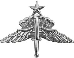 USAF DRESS BADGE Military Free Fall Parachutist Badge (1 Combat Jump)