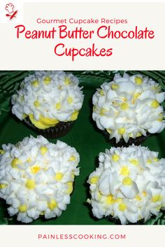 Learn how to make gourmet cupcake recipes. This peanut butter chocolate cake recipe makes fabulous cupcakes. This one is great to bake in the small tins or large tin.