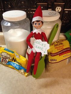 Elf wants cookies!