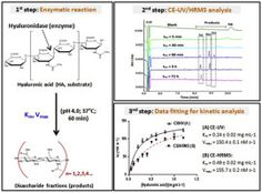 #ACA: Hyaluronidase reaction kinetics evaluated by capillary electrophoresis with UV and high-resolution mass spectrometry (HRMS)… #MassSpec