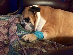 Just had surgery .