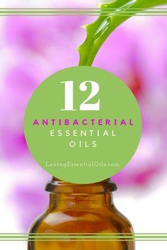 Top 12 Antibacterial Essential Oils | Best Essential Oil to Kill Germs | Essential Oil Tips & Uses | Germ Fighting Oils