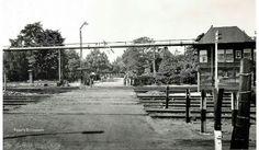 Trein overweg Treebeek
