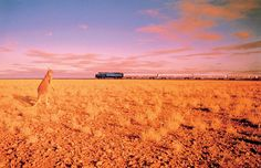 The Nullabor Plain in Australia has the world's longest completely straight section of railway track: 297 miles kilometers) without a bend! Australia Travel, Western Australia, Southern Rail, Train Journey, Oil And Gas, Travel Deals, Train Travel, Oh The Places You'll Go, Luxury Travel