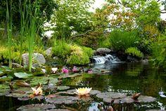 Seattle Southside Itinerary Highline Botanical Garden