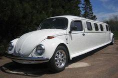 VW bug limo. Very fun!