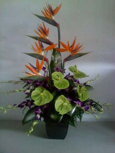 Delightfully colorful tropical design with green Anthuriums, Bird of Paradise and purple Dendrobrium Orquids.
