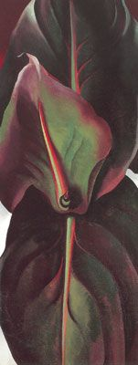 Georgia OKeeffe,  Canna Leaves. Fine Art Reproduction Oil Painting Her Colors are Oh So Great.