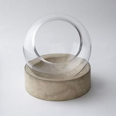 Glass Terrariums + Wood Base #WestElm... For her nature table