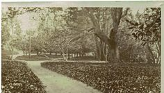 Campus of University of California, Berkeley, CA 1909