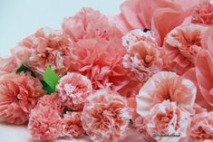 Flores rosas peonías- bolsas plásticas recicladas Color Rosa, Flower Crafts, Diy, Flowers, Plants, Chocolates, Recycled Plastic Bags, Carnations, Recycled Materials