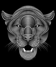 Panther on Illustration Served