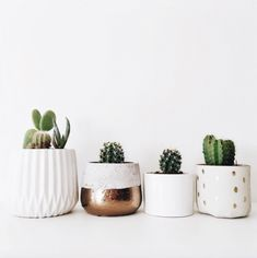 Cactus plants can be a beautiful interior to create your home more liked, a very adorable idea. It's not a good idea to put some of your indoor plants for a few factors. Retro Home Decor, Diy Home Decor, Art Decor, Decoration Cactus, Apartment Plants, Apartment Ideas, Big Plants, Cactus Plants, Small Cactus