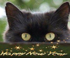 Artcolony: HAPPY NEW YEAR!