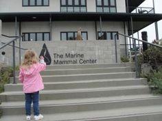 Visiting The Marine Mammal Center