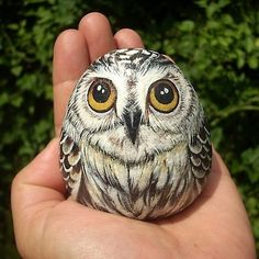 'Little owl' by buma. Owl painted on stone with acrylic colours. Pebble Painting, Pebble Art, Stone Painting, Rock Painting, Painted Rock Animals, Hand Painted Rocks, Painted Owls, Painted Stones, Painting Animals On Rocks