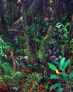hajandrade Rॐfugεε in Wondॐrland — Anderson Debernardi Tropical Forest, Tropical Art, Tropical Garden, Tropical Plants, Tropical Paintings, Jungle Life, Jungle Art, Welcome To The Jungle, Amazing Nature
