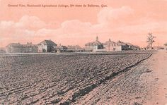Canada Que. Ste. Anne de Bellevue, Macdonald Agricultural College, General View | eBay