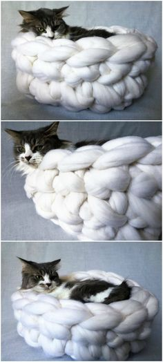 How To Hand Knit This Cute Cat Bed In 30 Minutes Comment tricoter à la main ce lit de chat mignon en 30 minutes Diy Cat Bed, Diy Bed, Chat Crochet, Crochet Cat Beds, Crochet Toys, Crochet Baby, Cat Anime, Knitted Cat, Super Cat