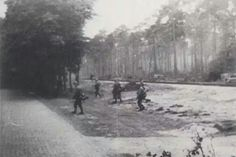 German infantry approaching Wolfheze on Tuesday 19th September