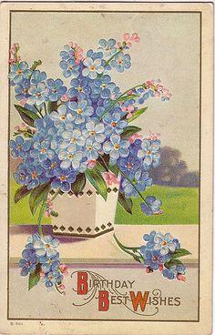 Forget-Me-Nots - vintageimages.org