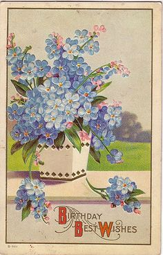 Vintage birthday card with forget me nots.