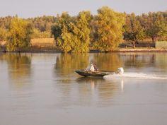 barca Danube Delta