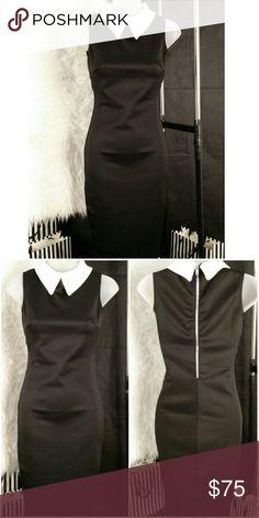 "Collared Sleeveless Dress Collared Sleeveless Dress Main Color: Black Material: 95% Polyester 5% Elastane Available sizes: S,M,L  -Back zipper closure -Stretchable material -5.5"" back slit Super Chic LBD!  Approximate measurements:  Size S dress length: 39"" Size M dress length: 39.5"" Size L dress length: 40""  Brand new with tags Boutique  Dresses"