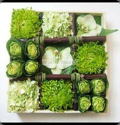 green, white, brown. kale, hydrangeas, orchids, mums.