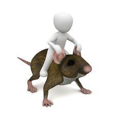 Ratón, Rata, Paseo, Trampa De Ratón