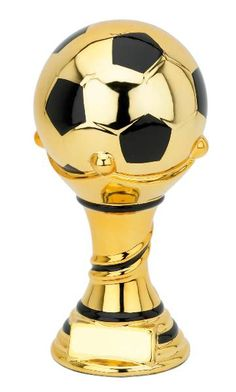 Premier Trophies is the UK's number one online retailer of trophies, medals and awards. We stock the most comprehensive range of trophies and awards, at the most competitive prices you'll find anywhere online. God Of Lightning, Football Squads, Football Trophies, Education Middle School, Jesus Wallpaper, Trophy Design, Cricket World Cup, Soccer Party, Fifa