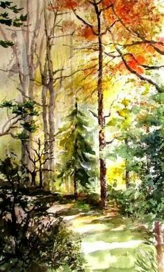 Watercolor forest landscape