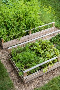 How to turn lawn into vegetable garden beds while feeding the soil and creating no waste!