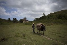 Role of Hillary Clinton's brother in Haiti gold mine raises eyebrows - The Washington Post